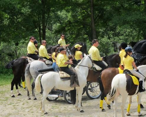 caballos-villasana-4